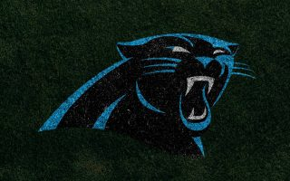 Carolina Panthers For PC Wallpaper With Resolution 1920X1080
