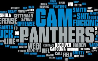 Panthers For Desktop Wallpaper With high-resolution 1920X1080 pixel. You can use this wallpaper for your Mac or Windows Desktop Background, iPhone, Android or Tablet and another Smartphone device